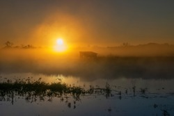 A photography bird blind on the shore of a lake shrouded in an eerie mist as the sun rises in the background on a cool Autumn morning.