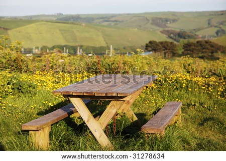 A picnic table surrounded by flowers with hills, a river and boats in the background