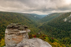 A picture from Lindy Point overlooking Blackwater Canyon on a cloudy autumn day.