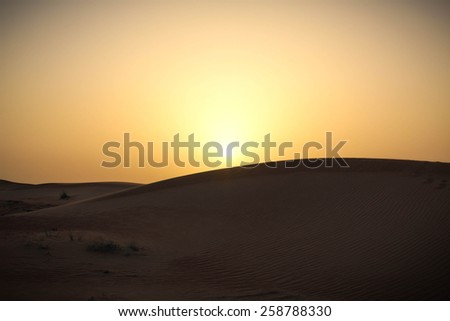 A picture of a sand dune in a desert at sunset