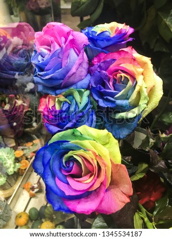 A Picture of a weird bouquet of rainbow colored roses. Some kind of kitsch.