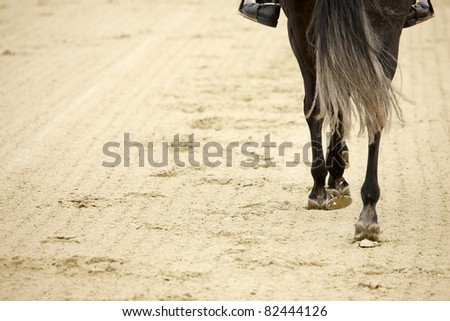 A picture of an equestrian on a horse in motion over natural background - stock photo