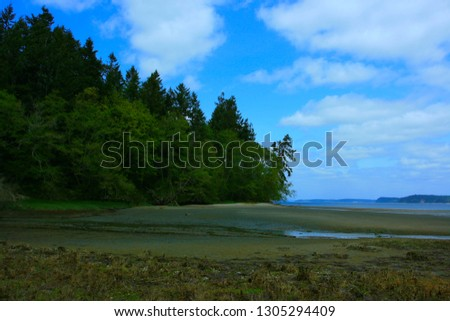 a picture of an exterior Pacific Northwest  Puget sound shoreline