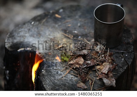 A picture of the fire survivors cones and pine needles on the burned stump.Flame burns through a log with a metal camping mug. Burning the stump with a yellow flame.Close up.Selective focus.