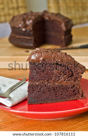 A piece of home made chocolate sponge cake