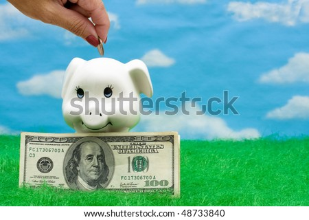 A piggy bank on grass with a sky background, Adding to your Savings