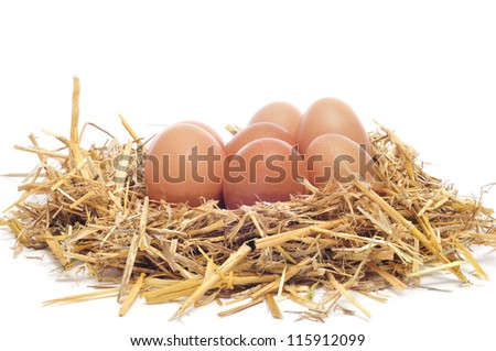 a pile of brown eggs in a nest on a white background