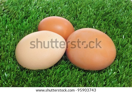 a pile of brown eggs on the grass