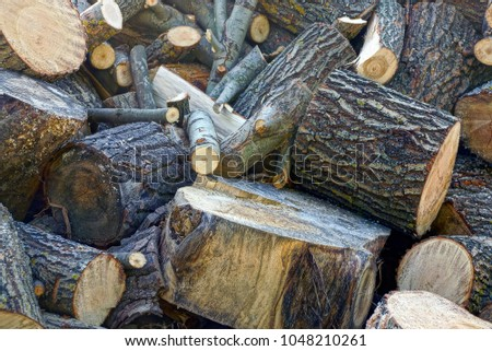 A pile of brown firewood and logs in the yard #1048210261