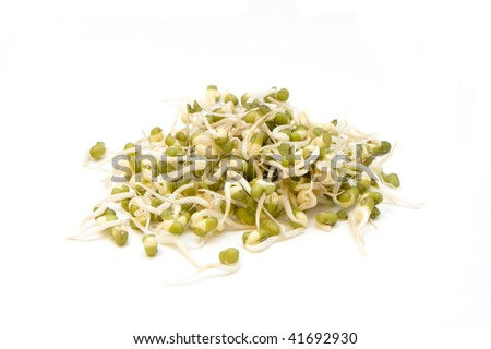 A pile of fresh bean sprouts isolated n a white background.