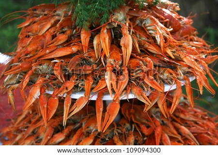 A pile of fresh boiled crayfish with green dill stacked on a plate