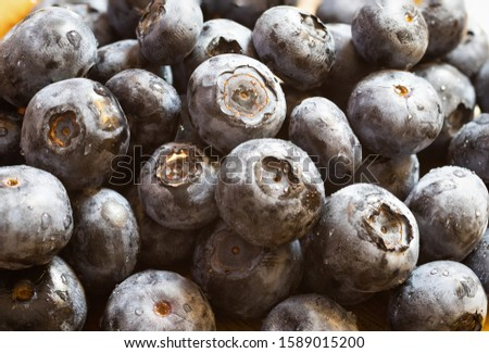 A pile of freshly washed blueberries with lot of water droplets on them. Concept fresh, healthy natural raw food.Big heap