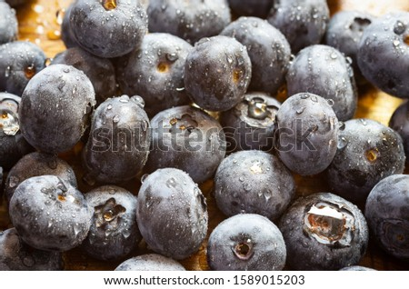 A pile of freshly washed blueberries with lot of water droplets on them. Concept fresh, healthy natural raw food._