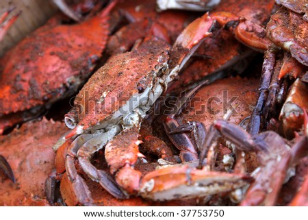 A pile of hot and dirty crabs, covered in seasoning.