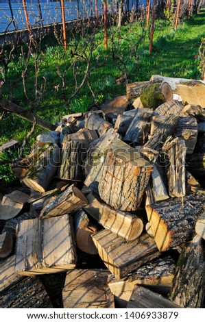 A pile of piled firewood in a private yard on a beautiful sunny day