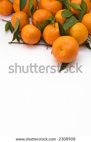 A pile of tangerine branches - stock photo