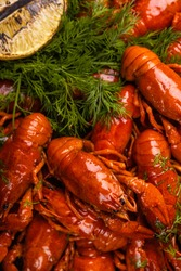 A pile of tasty boiled crawfish. Boiled red crayfish or crawfish with  herbs on a table. Crayfish party, restaurant, cafe, pub menu.
