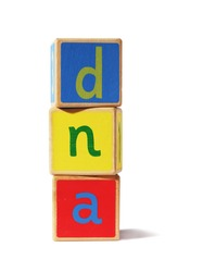 a pile of traditional wooden blocks on a white background, with the letters dna.
