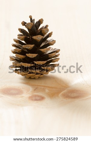 A pine cone on a pine wood background. cone on a pine wood background. cone on a pine wood background.