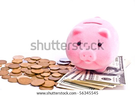a pink pig stands on the dollars isolated on white