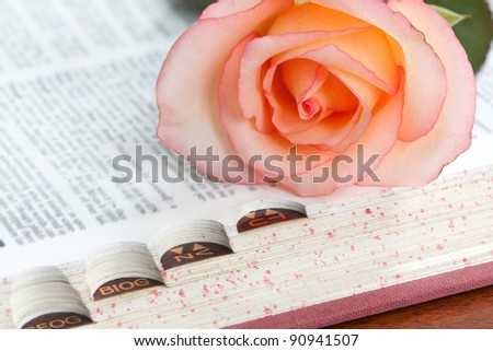 A pink rose on the index edge of a dictionary (see also ID68740681)