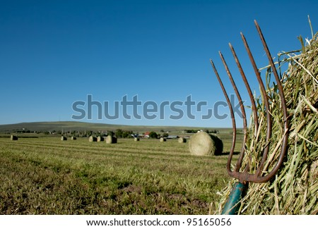 a pitchfork stuck in a bale of hay with a farm landscape in the background,  a hill and field of baled hay in the background.