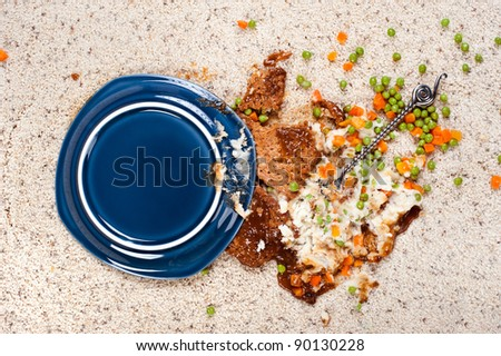A plate of meatloaf with mashed potatoes and peas dropped on new carpet.