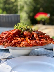 A plate with cooked crayfishes