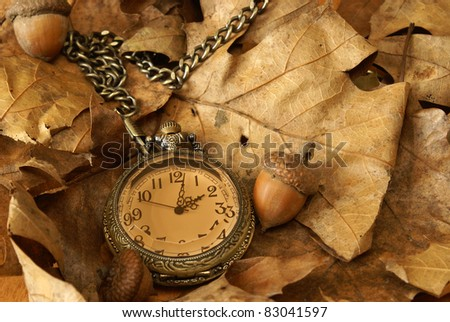 A pocket watch on some dead oak leaves and acorns for the changing of the autumn season.