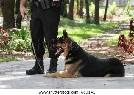 A policeman with his police dog.