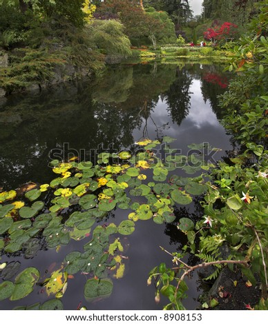 A pond and trees in well-known gardens Butchart Gardens on island Vancouver
