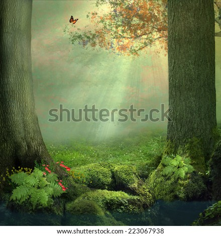 Stock Photo A pond and two big trees in the forest in a beautiful day with rays of lights between the leaves