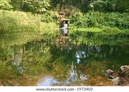 A pond in Tehidy Country Park, Cornwall, UK