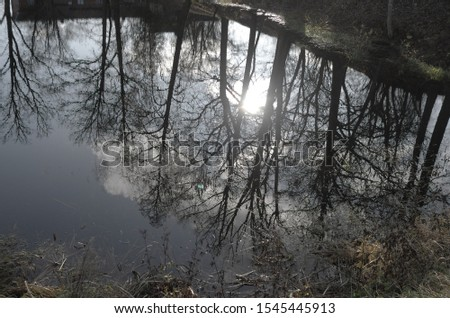 a pond with reflected sun and bare trees in autumn