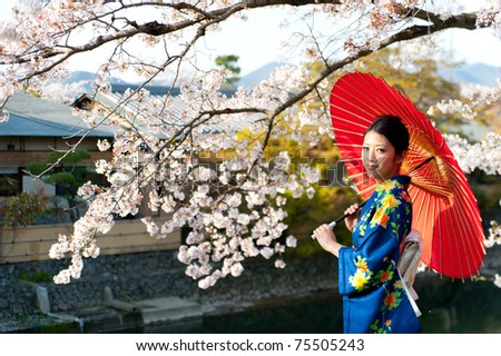 a portrait of japanese kimono woman and cherry blossom