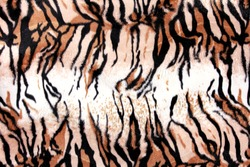 A portrait of texture of print fabric striped tiger leather for background