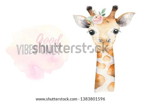 A poster with a baby giraffe. Watercolor cartoon giraffetropical animal illustration. Jungle exotic summer design