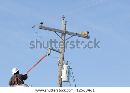 A power lineman rescuing a cat from the top of a power pole.