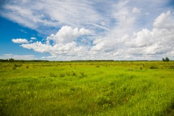 a prairie and grasland in eastern North Dakota.