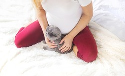 A pregnant woman with a cat lies in bed. Selective focus. animal.