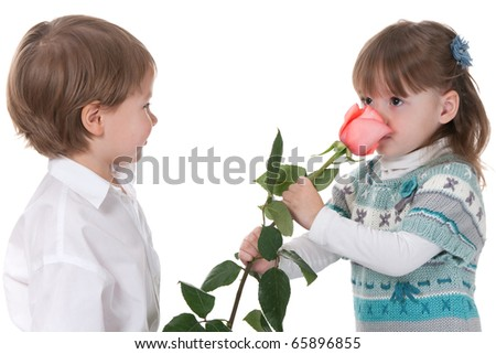 A pretty little girl is smelling a pink rose presented by a little boy; isolated on the white background