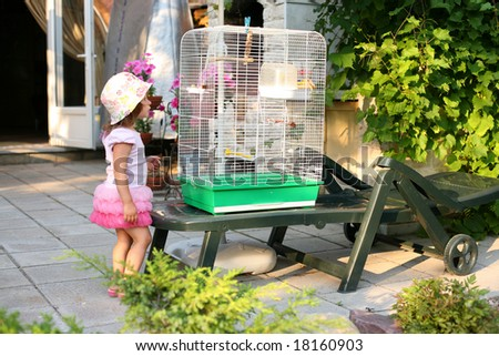 A pretty small girl looking at the cage with birds