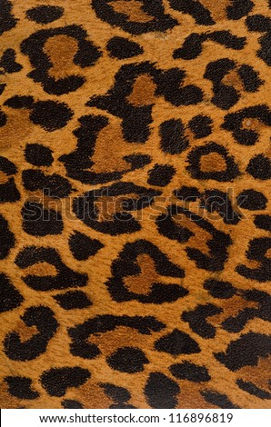 A printed representation of the beautiful markings of a leopard skin #116896819