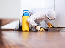 a professional pest control contractor kneeling and reclining in the kitchen and sprays chemicals against pests, bugs ands mold in his typical work dress for protect against the chemicals