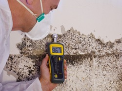 a professional pest control contractor or exterminator in a white safety dress and mask at a mold destroyed wall with a moisture meter check for mold pests and bugs and humidity