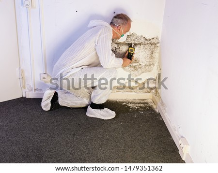 a professional pest control contractor or exterminator in his protection work wear for mold pests and chemicals kneeling at a mold destroyed wall with a moisture meter and check the humidity
