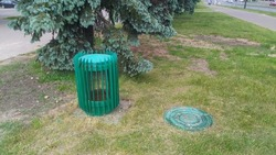 A protective metal structure with a mesh over the air vent and a cast-iron hatch over the underground utilities are located on a grassy lawn next to trees between the parking lot and the sidewalk