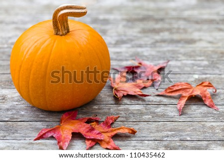 A pumpkin with colorful dried autumn leaves on a rustic table