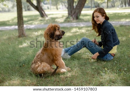 A puppy briard playing with his owner #1459107803