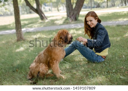 A puppy briard playing with his owner #1459107809